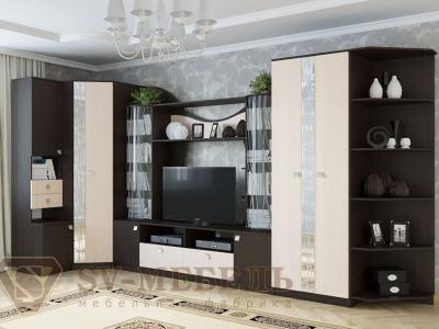 Модульная гостиная Гамма 15